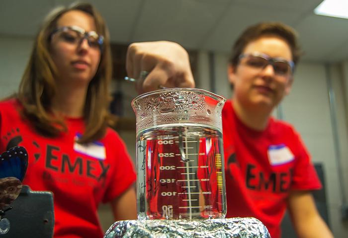 EMEX students