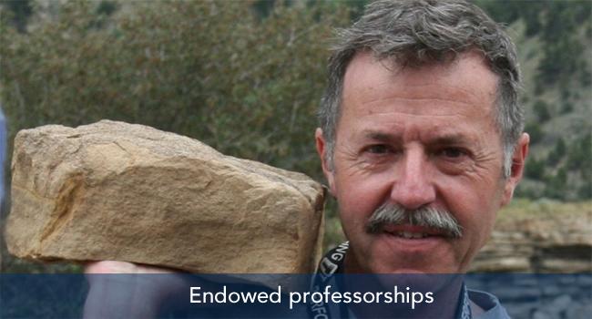 Endowed professorships