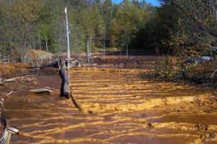 Kill zones such as the one at the Upper Red Eyes acid mine drainage spring in Somerset County, Pa., decimate plant lif