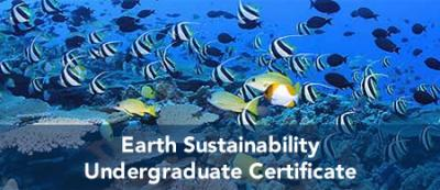 Earth Sustainability - Undergraduate Certificate