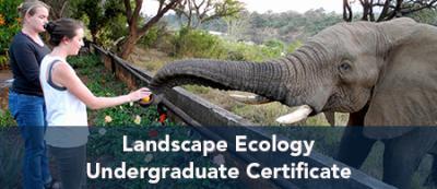 Landscape Ecology Undergraduate Certificate