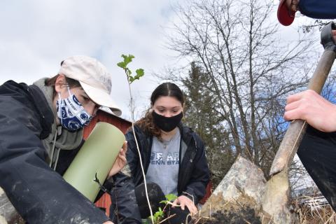 Amanda Byrd (left), Kelsie Richner (center) and Chris Long (right), plant a sapling