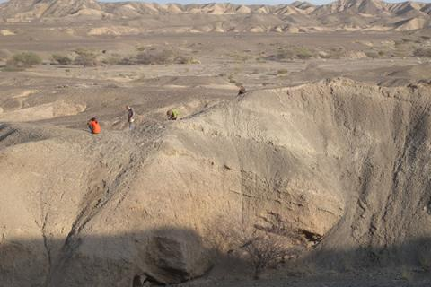 An aerial view of the excavation site with sedimentary layers containing artifacts and bones, which were part of the study.