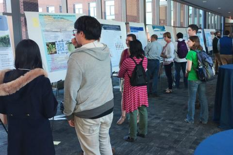 Faculty, staff, postdocs and students discuss microbiome research during a networking event.