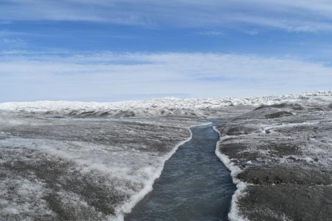 Dust and algae darken the Greenland ice sheet during the summer months