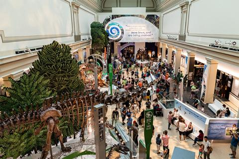 The David H. Koch Hall of Fossils – Deep Time at the Smithsonian National Museum of Natural History explores Earth's past