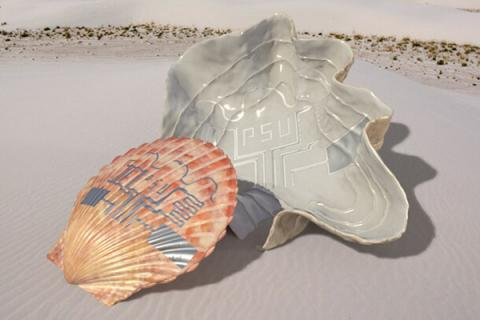 researchers demonstrated a new printing method using pulsed light to transfer an electronic circuit to a seashell