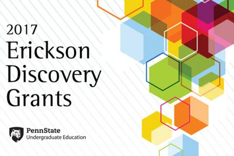 Erickson Discovery Grant for summer 2017