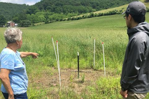 Tao Wen examines a dead vegetation zone on a farm in the Gregs Run watershed, Lycoming County.