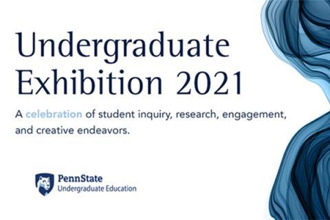 Undergraduate Exhibition