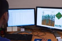 Geography graduate student Anthony Zhao uses the plot data to create forest models.