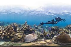 """Filming Glovers Reef for the documentary """"Chasing Coral."""""""