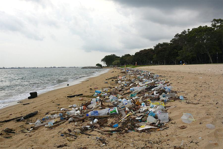 a large majority of the plastic that is not recycled enters the environment