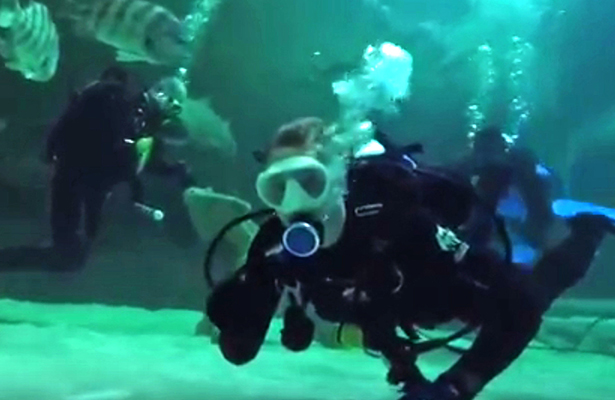 Science diving